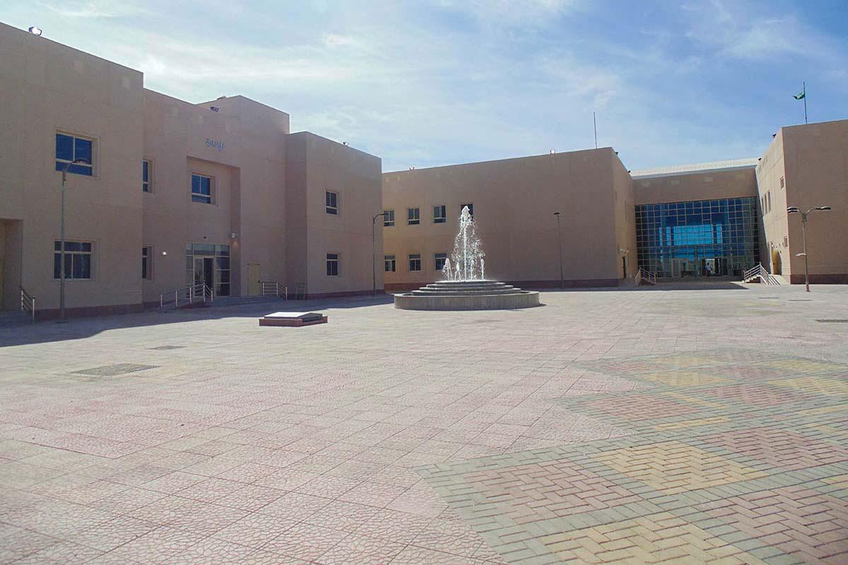 إنشاء الكلية الجامعية للبنات بالوجه